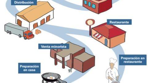 Blockchain para la seguridad de la cadena alimentaria: el caso de las uvas africanas